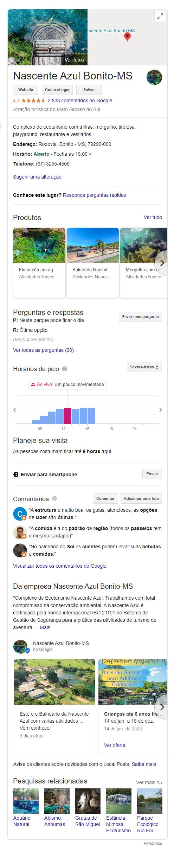 Exemplo Google Meu Negócio - Nascente Azul